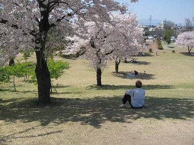 2009年4月9日 (4).JPG